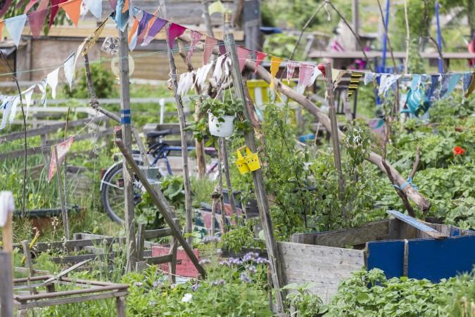 """Wer in der Stadt leben will, aber dennoch die Vorzüge der Natur genießen möchte, der kann sich auf dem Tempelhofer Feld dem """"urban gardening"""" anschließenn und die Gartenarbeit richtig auskosten. (#3)"""