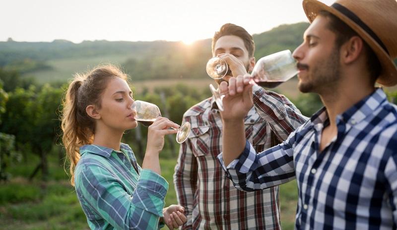 Von den Weingütern der Welt direkt in die Hauptstadt: Erstklassiger Wein, getestet vom Sommelier. (#2)